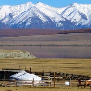 mongolia chaparel